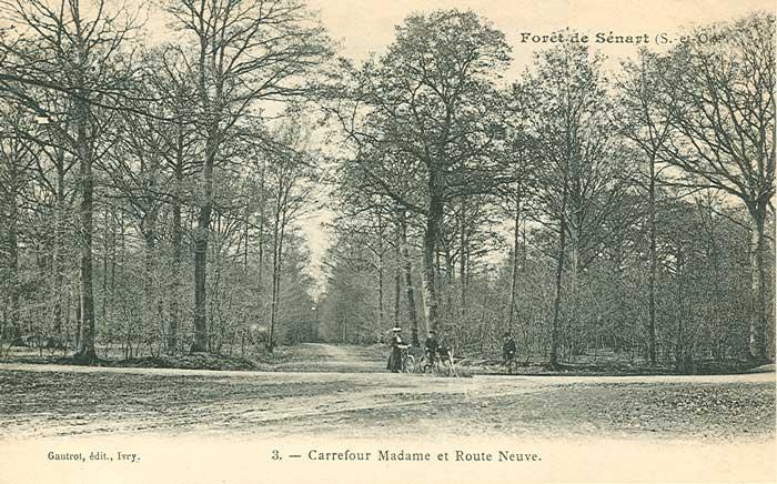 Forêt de Sénart