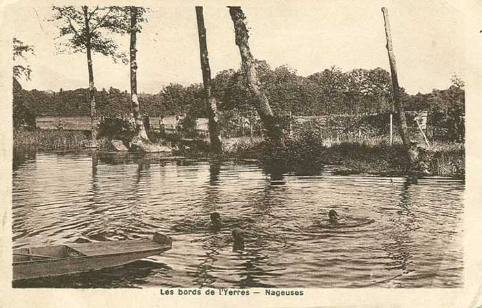 Nageuses dans l'Yerres